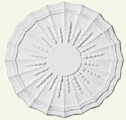 Husk Spray with Rib & Scalloped Edge Ceiling Rose